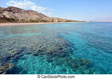 Seascape of Coral Beach Nature Reserve in Eilat, Israel. -...