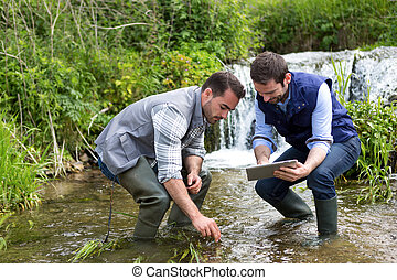 Scientist and biologist working together on water analysis -...