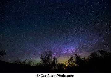 Milkyway rising over the trees - Night Landscapes