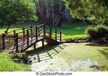bridge in park - a beautiful bridge going over the waters in...