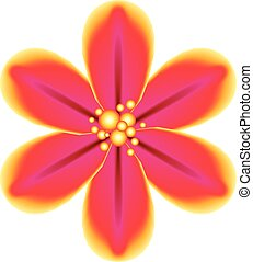 Pink Tropical Flower - Abstract tropical flower of pink and...