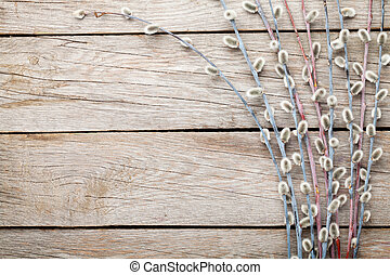 Pussy willow on rustic wooden background with copy space