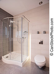 Shower and toilet - Glass shower and porcelain toilet in new...
