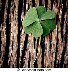 Closeup clover leaf on wooden heart background
