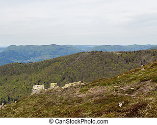 Vosges hills covered with trees - Looking past rocks at tree...