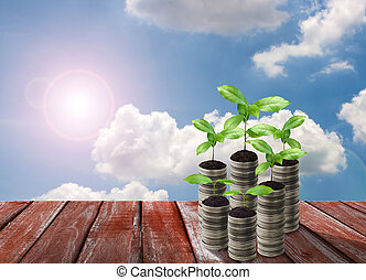 Stack of silver coin and small plant concept growth
