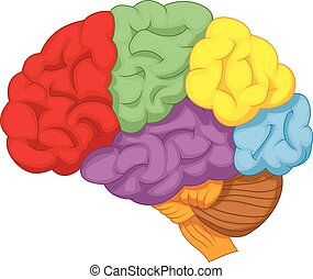 Cartoon colorful brain - Vector illustration of Cartoon...