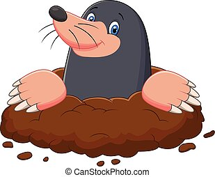 Cartoon mole gesturing - Vector illustration of Cartoon mole...