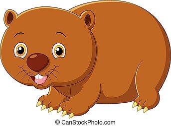 Cartoon wombat - Vector illustration of Cartoon wombat