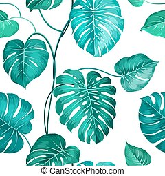 Topical palm leaves. - Topical palm leaves over white,...