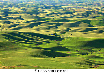 Rolling hills landscape in Palouse - Scenic landscape from...