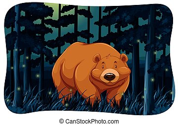 Bear and fireflies - Brown bear and fireflies in the jungle...