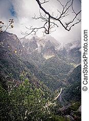 mountains of madeira - Mountain view on Madeira Island,...