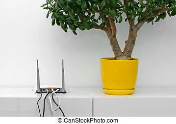 internet router and flower pot on white shelf in bright...