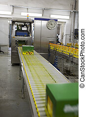 Production wine, juice and drink, plant factory