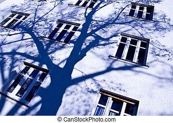 shadow of a tree in front of a house facade