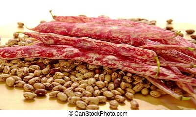 pinto beans on a white background