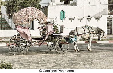 Elegant vintage horse carriage - Pink horsedrawn wagon on...