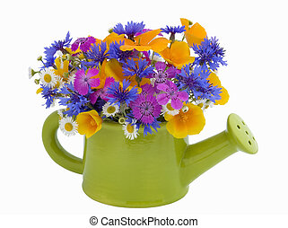 bunch of flowers in the watering pot isolated on white...