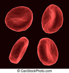 Red blood cell - Four blood human cells in different...