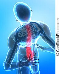 Pain concept - Man with pain in spine part - x-ray view