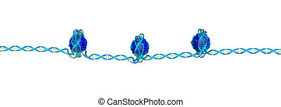 Nucleosome pics is a collection of sciencetuts