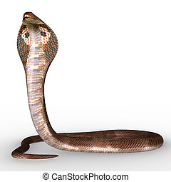 Naga snake - The word Naga comes from the Sanskrit, and nag...