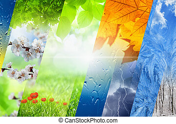 Four seasons of year - Beautiful nature background - four...