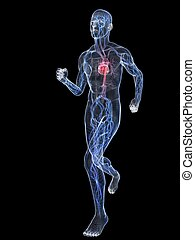 jogger wire - 3d rendered illustration of a transparent...
