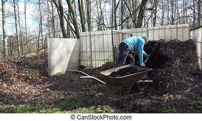 gardener load compost - young man gardener work hard with...