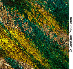 Dry ground surface colored green in closeup