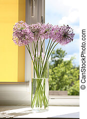 Flowers On Window-Sill