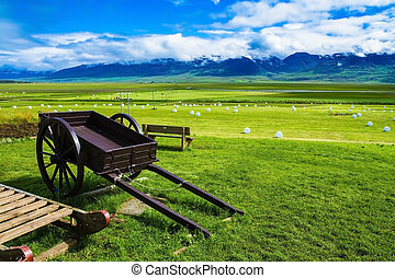 Old two-wheeled cart on the lawn - The reconstituted village...