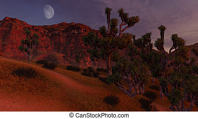 Thickets of Joshua trees and rocks under half moon -...