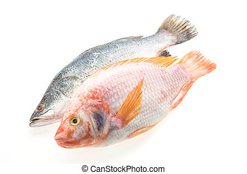 Fresh fish - Raw fresh fish isolated on white background