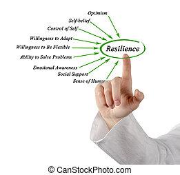 diagramme, de, résilience,