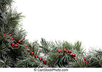 Garland Border - A green garland border with red strung...