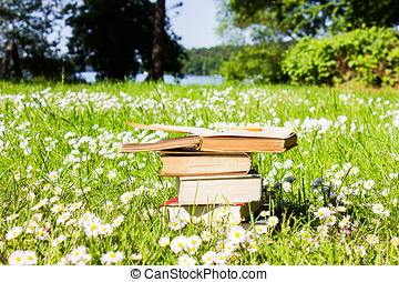 Books on a Meadow covered with Flowers