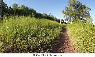 Footpath near railroad - Overgrown with grass footpath near...