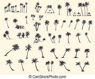 Vector Illustrations Silhouette Palm Trees Sketch
