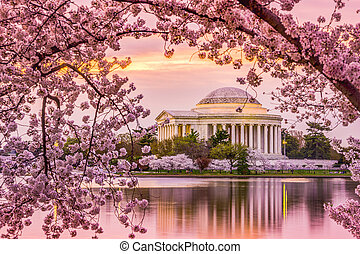 Jefferson Memorial in Spring - Washington, DC at the Tidal...