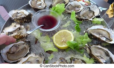 oysters - sea food, oysters and lemon