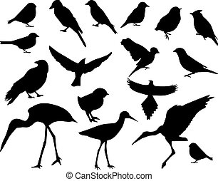 Set of silhouettes of birds - vector set-black silhouettes...