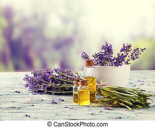 淡紫色, 仍然, 生活, 由于, 迷離, 領域, 上,...