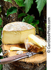 french cheeses Savoie on a piece of wood