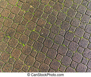Patterned pathway of paver stones - Paver stones form a...