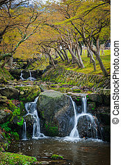 waterfall garden - waterfall in the garden spring...