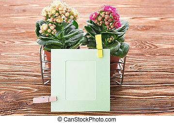 木制, 花, 卡片, 背景