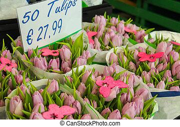 sprzedaż, Od, różowy, Holenderski, tulipany,...