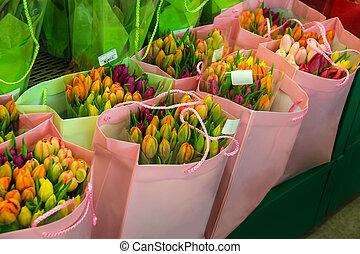 Sprzedajcie, barwny, Holenderski, tulipany, w, przedimek...